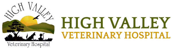 High Valley Veterinary Hospital