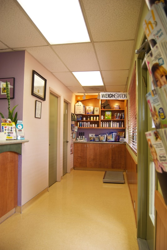 The hallway to exam rooms and a product display
