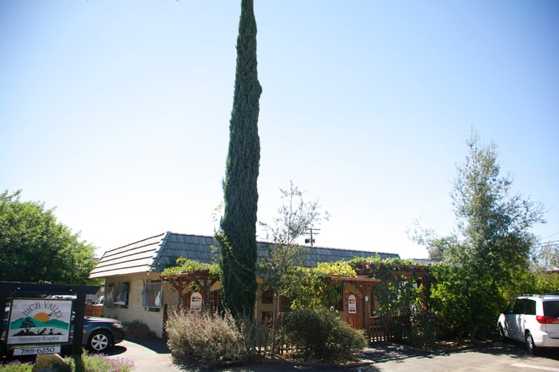 The outside of High Valley Veterinary Hospital