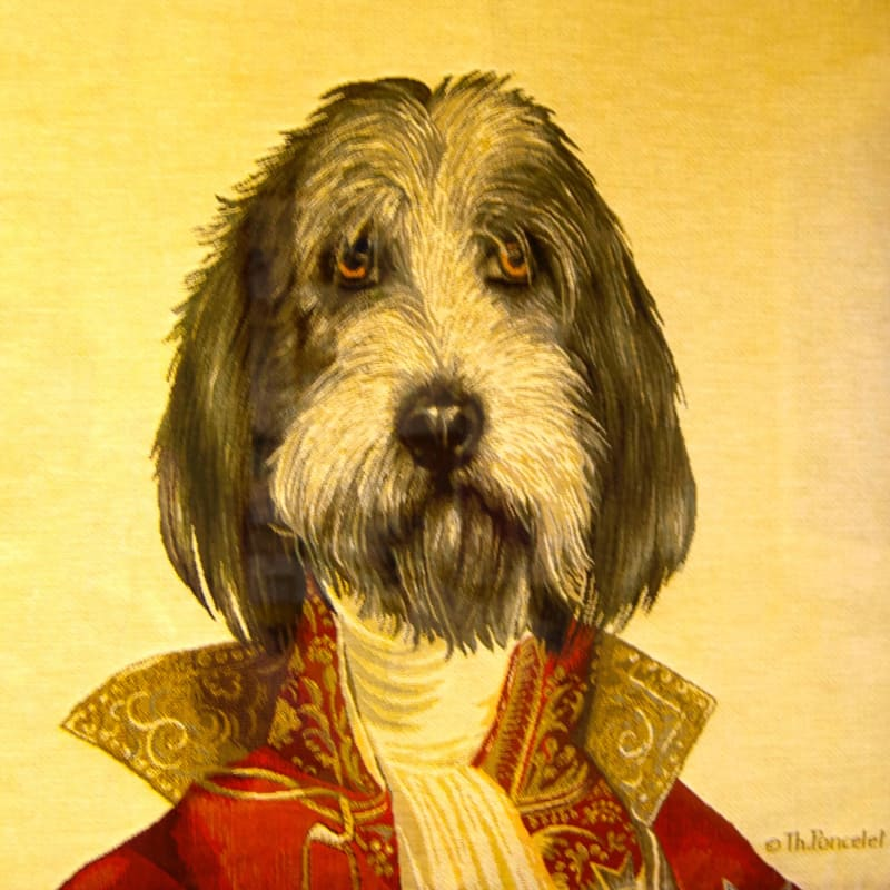 A portrait of a dog dressed as an old timey solider